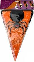 Halloween vlaggenlijn 6 meter – Spin met web (halloween versiering en decoratie) - Oranje