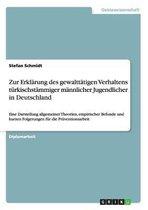 Zur Erklarung des gewalttatigen Verhaltens turkischstammiger mannlicher Jugendlicher in Deutschland