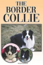 The Border Collie