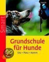 Grundschule für Hunde