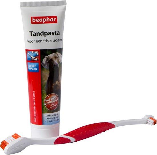 Beaphar - Hondentandenborstel en tandpasta - Combi pack - 1 stuk