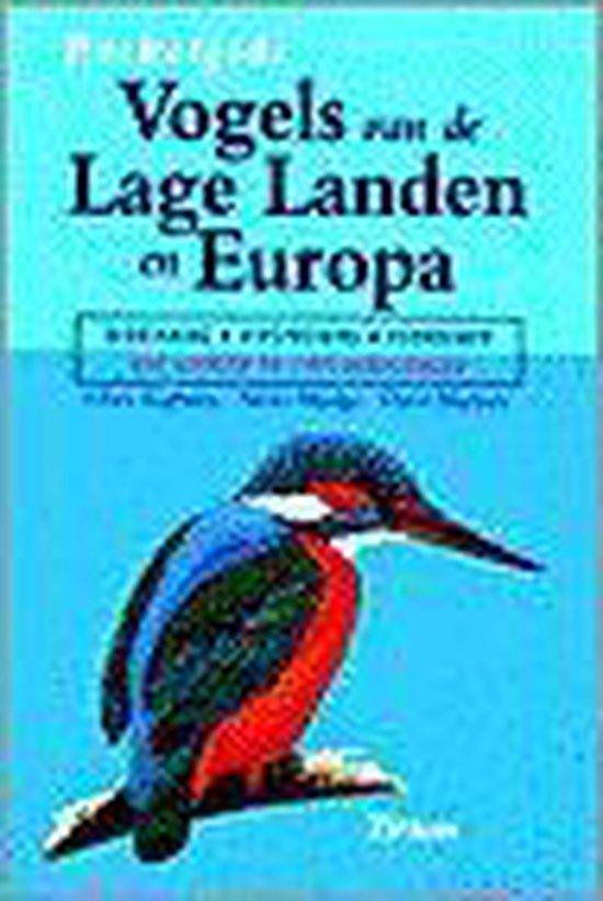Pocketgids Vogels Van De Lage Landen En Europa - Chris Kightley   Readingchampions.org.uk