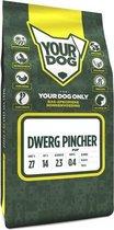 Yourdog Dwerg Pincher Pup - 3 KG