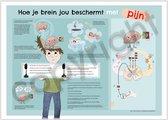 Mijn beschermende brein - Poster