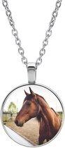 Ketting Glas - Paard