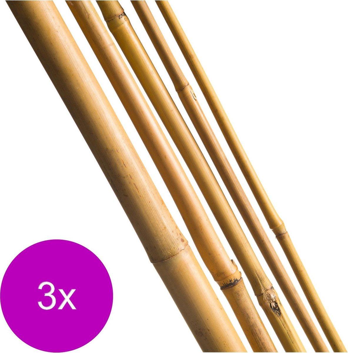 Nature Bamboestok Naturel - Klim-En Geleide Artikel - 3 x 1.2x1x120 cm