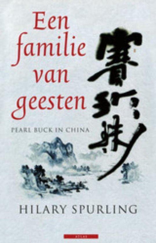 Cover van het boek 'Een familie van geesten'