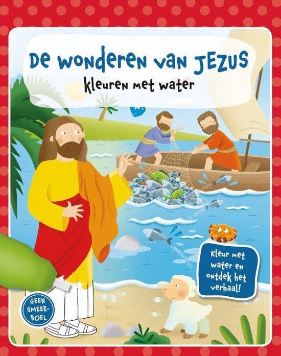 De wonderen van Jezus - Diverse auteurs |