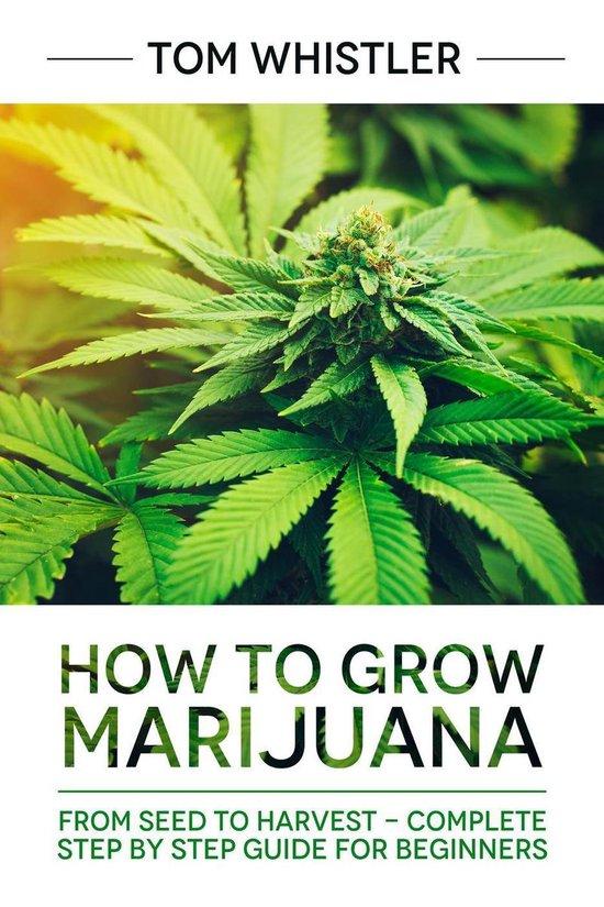 Марихуана st текст марихуана не отпускает