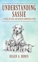 Understanding Sassie