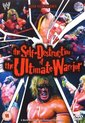 Wwe - The Self Destruction Of