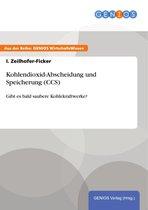 Boek cover Kohlendioxid-Abscheidung und Speicherung (CCS) van I. Zeilhofer-Ficker