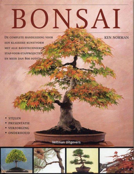 Bonsai - K. Norman | Fthsonline.com