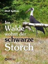 Im Walde wohnt der schwarze Storch