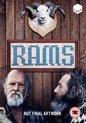 Rams (import)