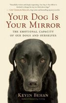 Your Dog is Your Mirror