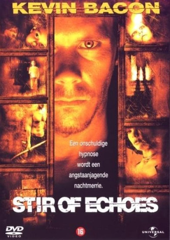 Stir Of Echoes (D)