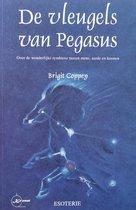 Vleugels Van Pegasus