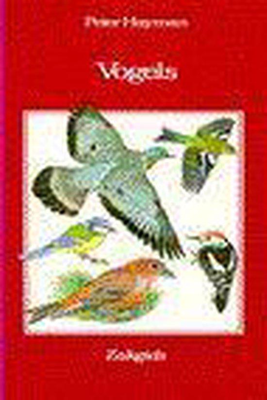 Vogels - Peter Hayman |