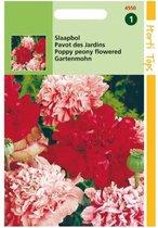 Hortitops Zaden - Papaver Somniferum (Paeoniflorum) Gemengd