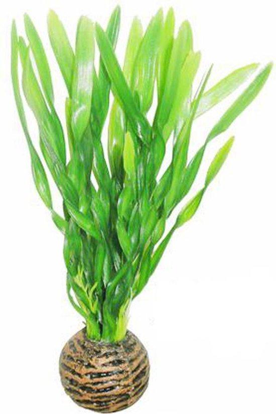 Superfish easy plants voorgrond nr. 6, van plastic 13 cm - 1 ST