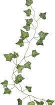 Decoratieve Klimop Backdrop Decoratie | 5 stuks a 2 meter | Kunst | Beautiful Botanics | Ginger Ray