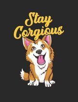 Stay Corgious
