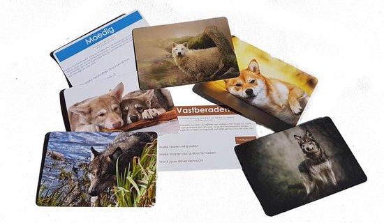 Wijze Wolf Coachkaarten