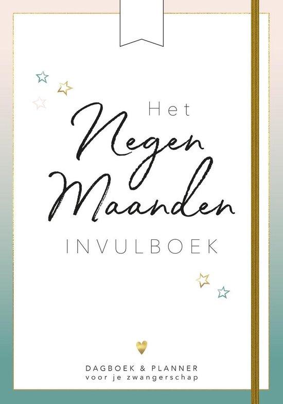 Het negen maanden invulboek - Eva Reinders |