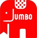Jumbo Houten puzzels