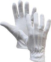 3x Luxe Serveerhandschoenen met Nopjes - L