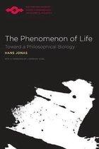The Phenomenon of Life