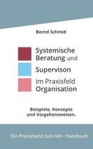 Systemische Beratung und Supervision im Praxisfeld Organisation: Beispiele im Dialog