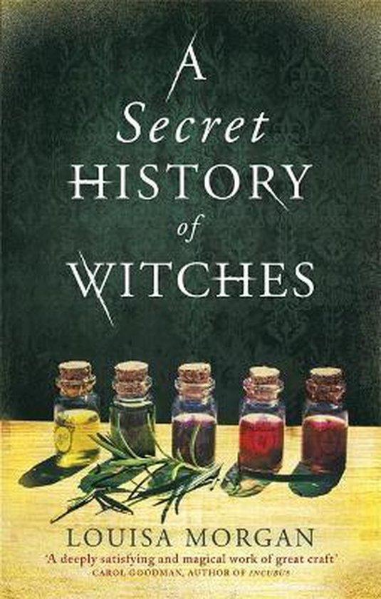 Boek cover A Secret History of Witches van Louisa Morgan (Paperback)