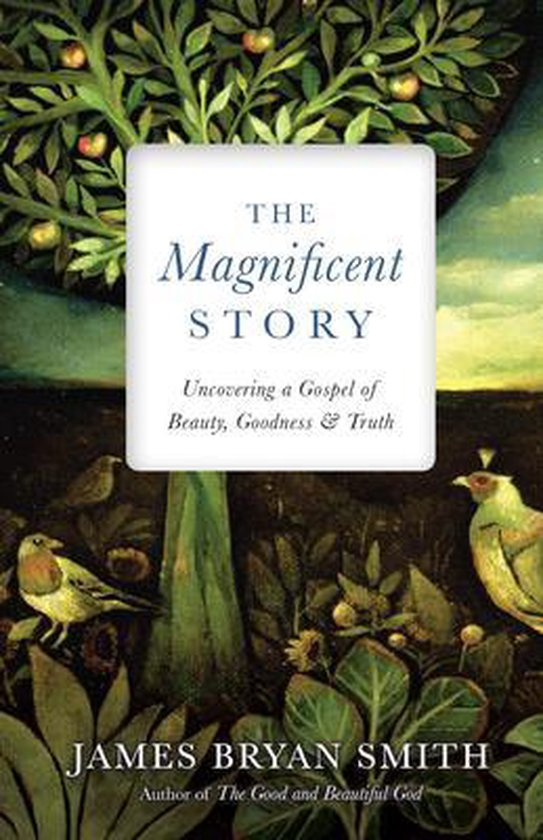 Boek cover The Magnificent Story van James Bryan Smith (Hardcover)