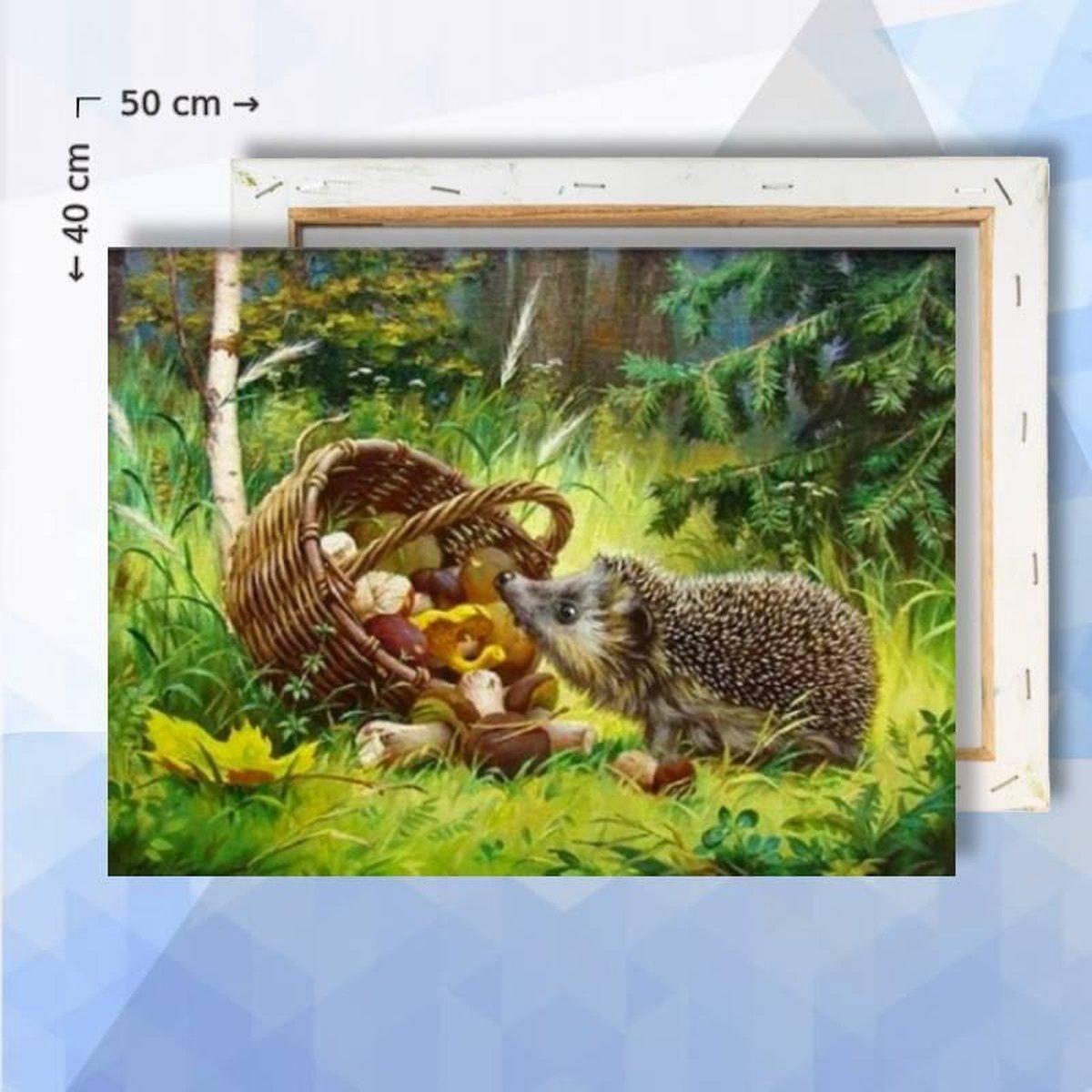 Schilderen op nummer pakket Egel in het bos - 50 x 40 cm - met frame