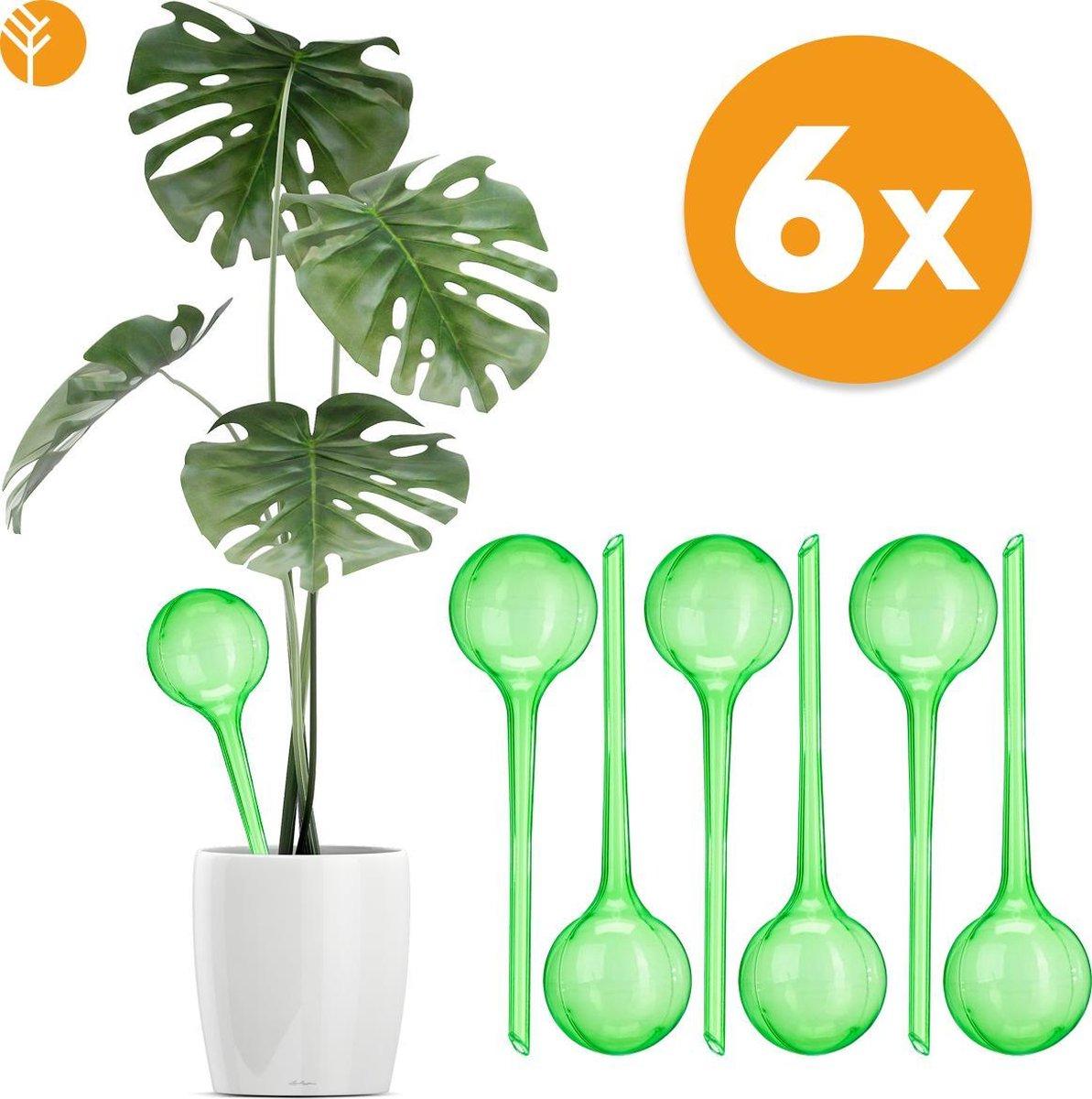 Waterdruppelaar Set van 6 Stuks voor Planten – Automatisch Watergeefsysteem voor Kamerplanten – Plan
