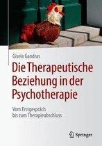 Die Therapeutische Beziehung in Der Psychotherapie