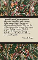 Pictorial Practical Vegetable Growing - A Practical Manual Giving Directions for Laying out Kitchen Gardens and Allotments, Describing the Value and U