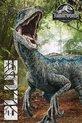 Jurassic World Fallen Kingdom Blue Poster 61x91.5cm