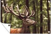 Portret van een hert in het bos Tuinposter 120x80 cm - Tuindoek / Buitencanvas / Schilderijen voor buiten (tuin decoratie)