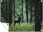 Hert in het bos Tuinposter 80x60 cm - Tuindoek / Buitencanvas / Schilderijen voor buiten (tuin decoratie)