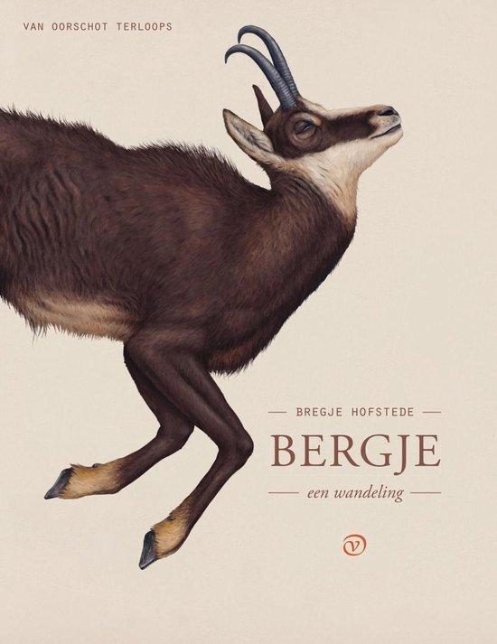 Terloops - Bergje - Bregje Hofstede |