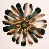 Feather of life - VIERKANT 120x120, kunst op plexiglas. Bestel uw plexiglas schilderij bij The Art of Interior!