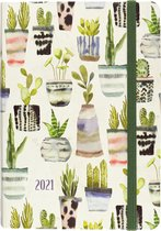 Agenda Watercolor Succulents 2020-2021 - 16 maanden