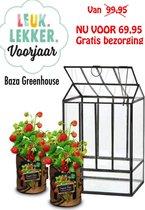 Greenhouse Kweekset een echt glazen kweekkas nu met 2 gratis moestuintjes