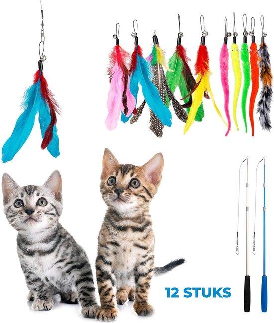Blue Premium kattenhengelset