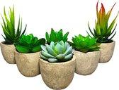 MegaSpront Kunstplanten - Vetplanten in Pot - 6 Stuks