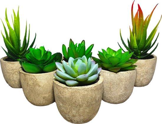 GreenDream kunstplanten - Kunstplanten - Kleine kunstplanten - Kunst vetplanten - Kunstplantjes - Kunstplanten in pot - vetplantjes - vetplant - Plantjes - Kamerplanten - Plantje - Nep planten - Nep plant - Nep - Vetplant - Kunst -