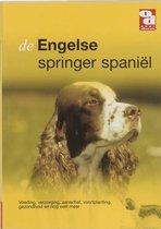 Over Dieren 185 -   De Engelse springer Spaniel